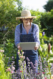 Woman senior taking picture with her tablet pc in garden Stock Photos