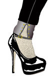 A woman with sensual shoe and fishnet stockings. Illustration representing a woman's charm Royalty Free Stock Images