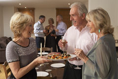 Woman Serving Hors D Oeuvres At Dinner Party Royalty Free Stock Photos