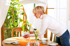 Woman setting the table for tea of coffee time. In her domestic dining room, the table is decorated with tulip flowers, whole scene is sunlit Royalty Free Stock Images