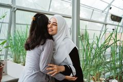 Woman shake hand and kissing forgiving each other. Muslim women shake hand and kissing forgiving each other while meeting in cafe royalty free stock images