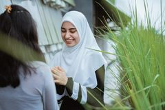 Woman shake hand and kissing forgiving each other. Muslim women shake hand and kissing forgiving each other while meeting in cafe royalty free stock image