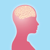 Woman shape with brain Royalty Free Stock Image
