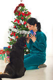Woman sharing Christmas gift with her dog Stock Photography
