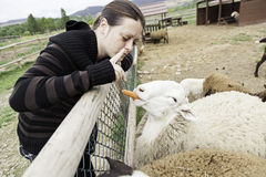Woman with sheep Royalty Free Stock Image