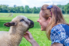 Woman and sheep heads together Royalty Free Stock Photos