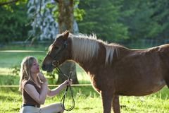 Woman and Shetland pony Royalty Free Stock Images