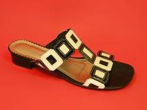 Woman shoe Royalty Free Stock Photos