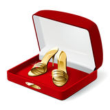 Woman shoes. Gold woman shoes in the red present box. Vector Illustration Royalty Free Stock Images