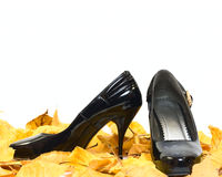 Woman shoes on dry fall leafs Stock Photo