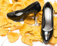 Woman shoes on Fall leafs Royalty Free Stock Photos