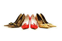 Woman shoes isolated Stock Images