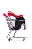 Woman shoes in shopping cart on white Royalty Free Stock Photography