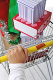 Woman in shoping pushing cart Royalty Free Stock Image