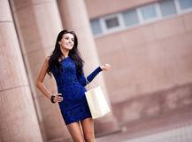 Woman with a shopping bag Royalty Free Stock Image
