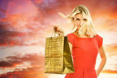 Woman with a shopping bag Stock Photos