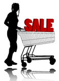 Woman with shopping cart. Attractive young woman with shopping cart (sale concept Stock Image