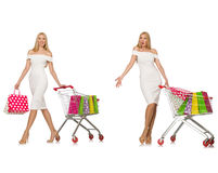 The woman in shopping concept Royalty Free Stock Photos