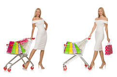 The woman in shopping concept Stock Images