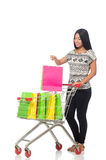 Woman in shopping concept on white Stock Photos