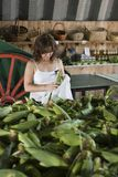 Woman shopping for corn Stock Photo