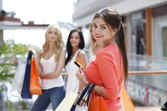 Woman shopping with credit card Stock Photography