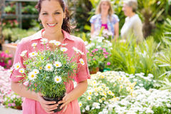 Woman shopping for flowers at garden centre Stock Photos