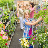 Woman shopping for flowers in garden shop Royalty Free Stock Image