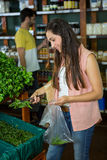 Woman shopping for fresh vegetables in organic section Royalty Free Stock Photos