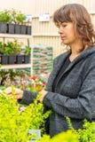 Woman shopping in the garden centre. A woman shopping for plants in the garden centre royalty free stock photo