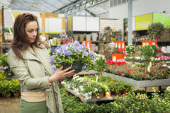 Woman shopping at gardening center Royalty Free Stock Images