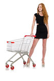 Woman after shopping in the supermarket Royalty Free Stock Images
