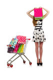 Woman after shopping in the supermarket Stock Images