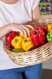 Woman shopping vegetables stock images