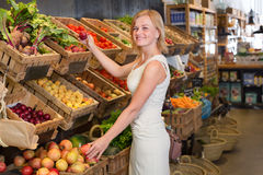Woman shopping veggies Stock Photography