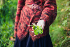 Woman showing handful of sorrel Royalty Free Stock Image