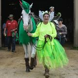 Woman Showing Horse - Walworth County Fair. A woman dressed in a green fairy outfit with a shows her robin hood white horse at the Walworth County Fair in royalty free stock photography