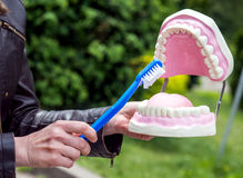 Woman showing how to clean the teeth with tooth brush properly and right Royalty Free Stock Image