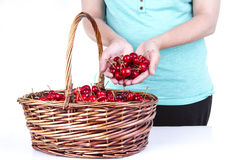 Woman showing some cherries. From a basket Stock Photography
