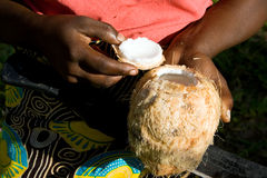 Woman shows opened coconut. Stock Photography