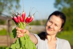 Woman shows a radish sheaf Royalty Free Stock Photos