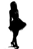 Woman silhouette. Silhouette of a female / model Stock Photos