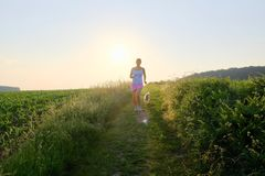 Woman Silhouette with a dog running down a gravel path at sunset Stock Images