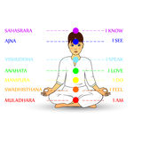 Woman silhouette in yoga pose with  chakras Stock Photography