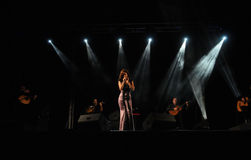 Woman_Singer_Guitars_Music_ Live Concert _Emotion Royaltyfria Bilder