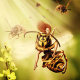 Woman sits astride a wasp. Fantasy magic world. Woman sits astride a wasp and controls an army of wasps. Focus on a girl eyes royalty free stock photography