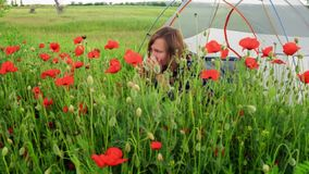 Woman sits near tent on blooming poppy field, admires and sniffs the flowers stock video footage