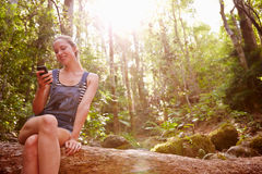Woman Sits On Tree Trunk In Forest Using Mobile Phone Stock Image