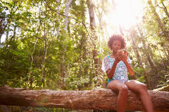 Woman Sits On Tree Trunk In Forest Using Mobile Phone Royalty Free Stock Images