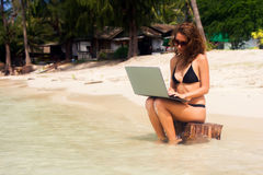 A woman is sitting on the beach with a laptop Stock Images